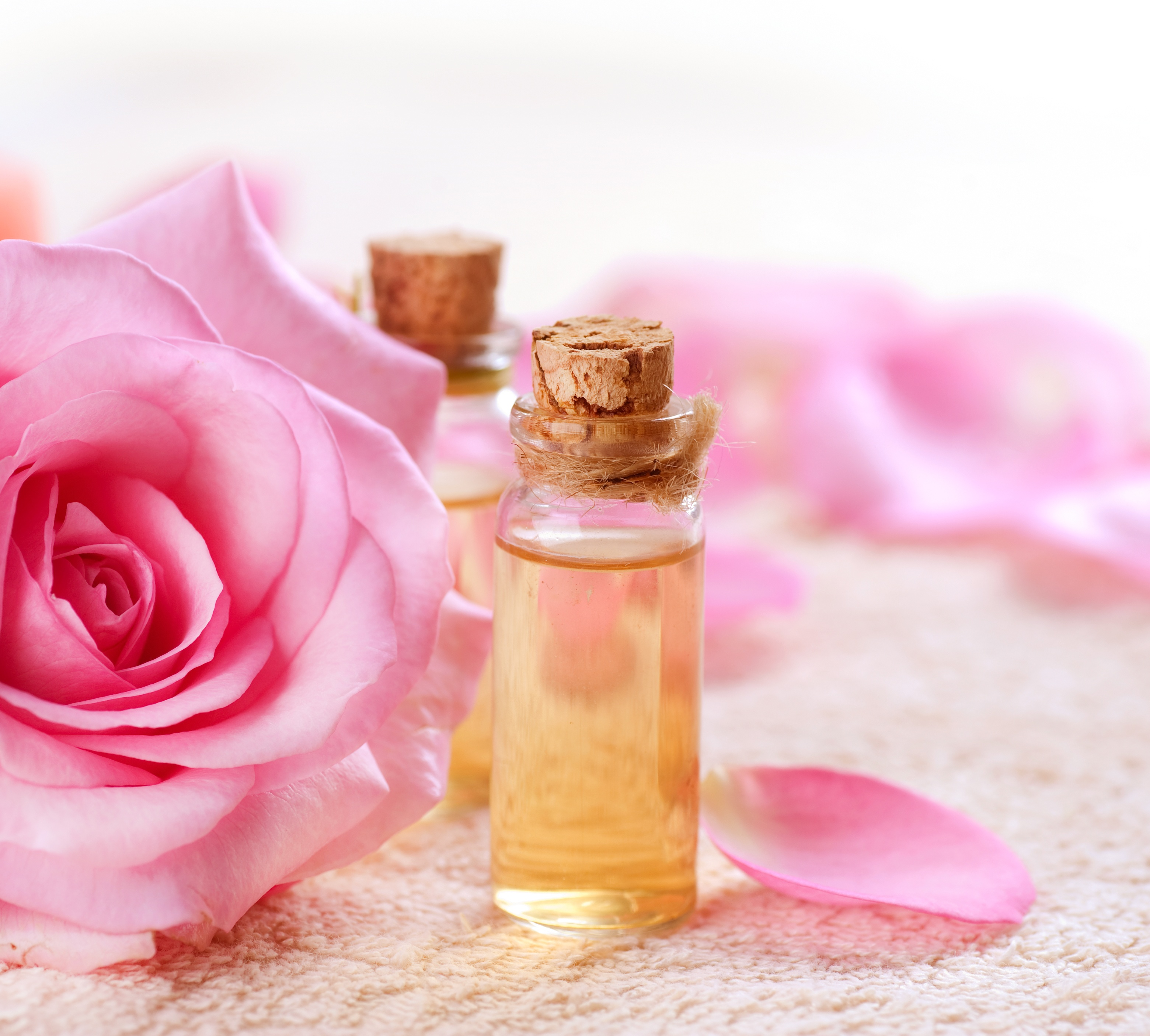 Best quality natural essential oils including Rose - Essential Rose Oil, Shahi Gulab, and other fragrance & perfume oils at the most discount rates by BMV Fragrances in UP, India.